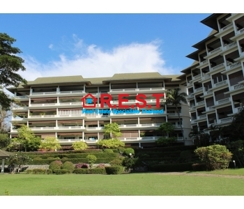 Rent Absolute Beach front condo