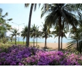 CS1851, Pattaya Beach front Condo For Sale