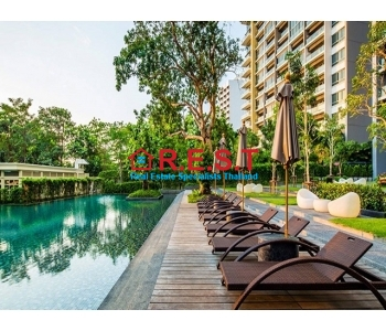 Zire Wongamat luxury Condo For Rent