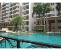 CR1315, Paradise Park Condo For Rent N/A